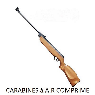Carabine à Air Comp 4,5 mm