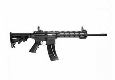 SMITH & WESSON MP15-22 SPORT